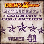 drew's famous instrumental country collection (vol. 41) - the hit crew
