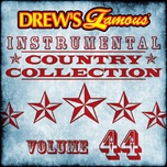 drew's famous instrumental country collection (vol. 44) - the hit crew