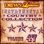 drew's famous instrumental country collection (vol. 47) - the hit crew