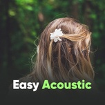 easy acoustic - v.a