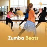 zumba beats - v.a
