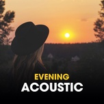 evening acoustic - v.a