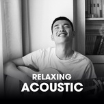 relaxing acoustic - v.a