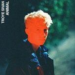 animal (single) - troye sivan