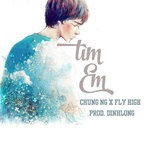 tim em (dinhlong mix) (single) - chung ng, fly high