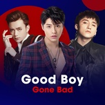 good boy gone bad - v.a