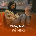 chang muon ve nha - v.a