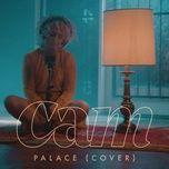 palace (cover) / diane (single) - cam
