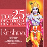 top 25 devotional ringtunes - krishna - v.a