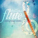 chillout flute - v.a
