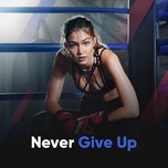 never give up - v.a