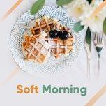 soft morning - v.a