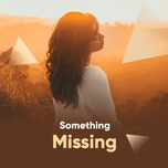 something missing - v.a