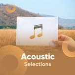 acoustic selections - v.a