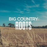 big country roots - v.a