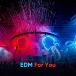 edm for you - v.a