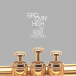 groovin' high: the ultimate trumpet collection - v.a