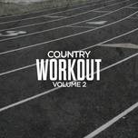 country workout, volume 2 - v.a