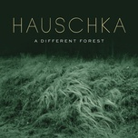 curious (single) - hauschka