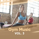 gym music (vol. 3) - v.a
