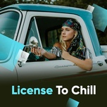 license to chill - v.a
