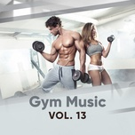 gym music (vol. 13) - v.a