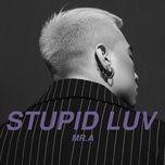 stupid luv (single) - mr. a