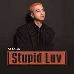 stupid luv (single) - mr.a