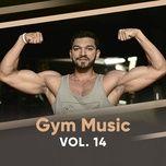 gym music (vol.14) - v.a