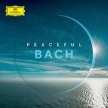 peaceful bach - v.a