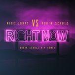 right now (robin schulz vip remix) (robin schulz vip remix) (single) - nick jonas