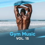 gym music (vol.15) - v.a