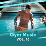gym music (vol.16) - v.a