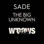 the big unknown (single) - sade