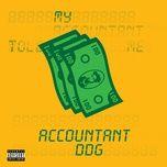 accountant (single) - ddg