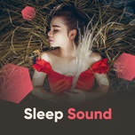 sleep sound - v.a