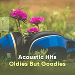 acoustic hits: oldies but goodies - v.a