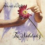 flower petals - the subdudes