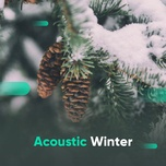 acoustic winter - v.a