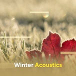 winter acoustics - v.a