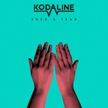 shed a tear (single) - kodaline