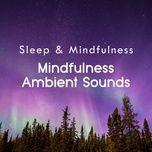 mindfulness ambient sounds (sleep & mindfulness) - sleepy times