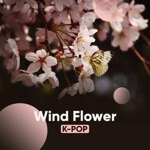 wind flower - v.a