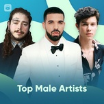 top male artists - v.a