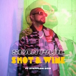shot & wine (single) - sean paul, stefflon don