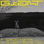 giant (single) - calvin harris, rag n bone man