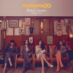 wind flower (japanese single) - mamamoo