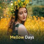 mellow days - v.a