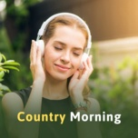 country morning - v.a