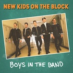 boys in the band (boy band anthem) (single) - new kids on the block